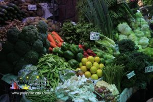 Baguio Vegetables