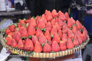 Baguio Strawberry