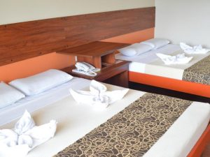 Andy Hotel Alluring Executive Suite