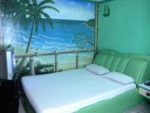 Halina Hotel Avenida VIP Room