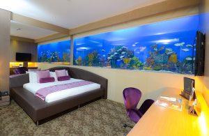 Hotel H2O AQUA ROOM