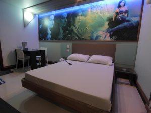 Dream Hotel Mini Suite (includes garage)