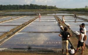 Baybay - Saltfarm - Leyte Salt Farm