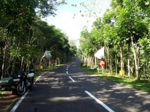 Legazpi City Lignon Hill