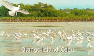 Olango Island in Cebu