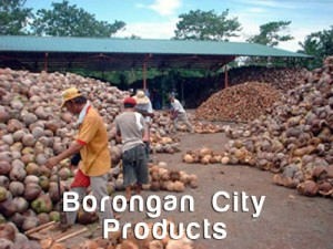 Philippines Oil Process - Copra - Borongan City Products